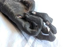 Monkey paw (3)